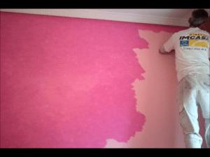 Tierras Florentinas rosas sobre fondo rosa