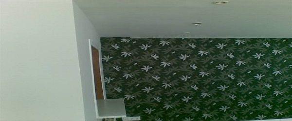 Papel Pintado estilo hojas