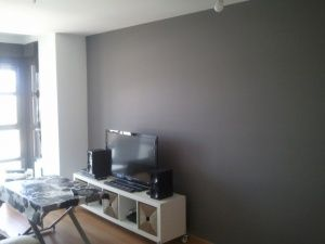 Esmalte al agua color gris en salon de Torrejon de Ardoz (1)