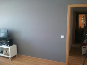 Esmalte al agua color gris en salon de Torrejon de Ardoz (2)
