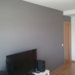 Esmalte al agua color gris en salon de Torrejon de Ardoz (4)