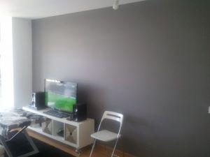 Esmalte al agua color gris en salon de Torrejon de Ardoz (7)