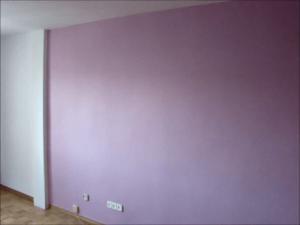 Esmalte Pymacril Color Malva (7)