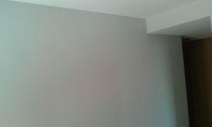 Esmalte Pymacril Color Gris (19)