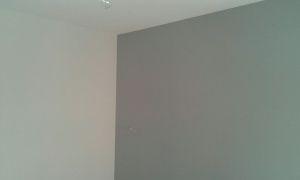 Esmalte Pymacril Color Gris Claro y medio (16)