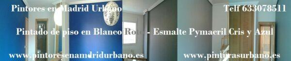 Pintores en Coslada – Pintar Piso en Plastico Sideral y Esmalte Pymacril – Mariangeles