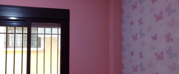 Plastico Rosa y Papel Pintado Mariposas (15)