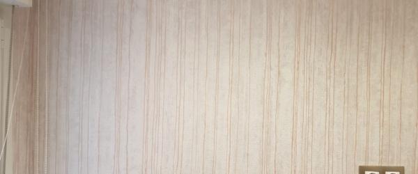 Papel pintado en lineas irregulares (2)